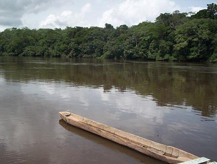 Een blik op de Dja Rivier in de Oostelijke provincie van Kameroen, tussen Lomié en Ngoila.