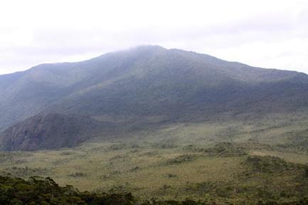 Wildreservaat Hamiguitan gebergte.