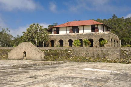 Koffieplantage in de Sierra Maestra regio in het Zuidoosten van Cuba.