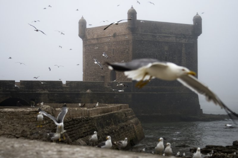 Foggy day in Essaouira. (Foto: CC/Flickr.com | Jacopo Romei)