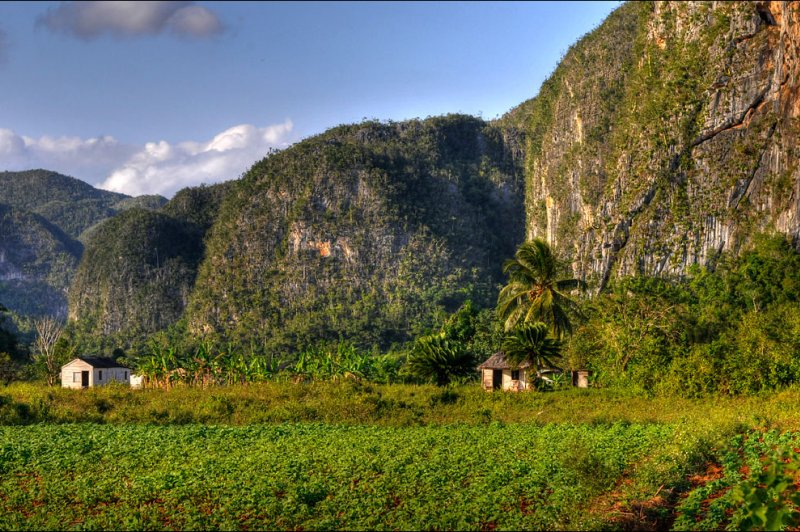 living in the Vinales valley. (Foto: CC/Flickr.com | Romtomtom)