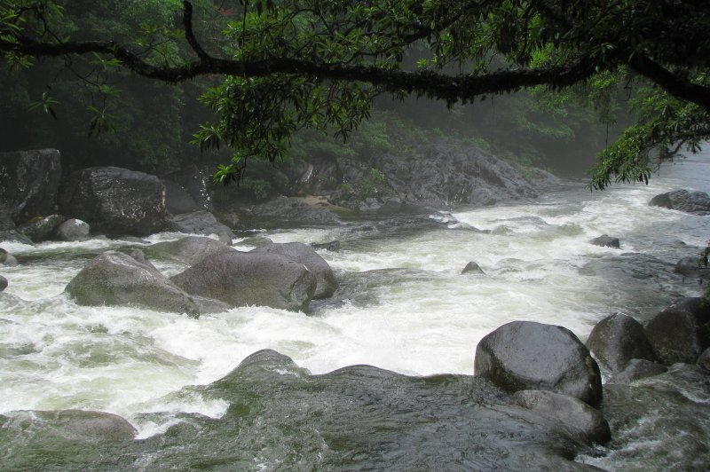 Mossman River during the rainy season. (Foto: CC/Flickr.com | tanetahi)