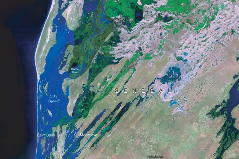 Senegal River Delta, Senegal. (Foto: CC/Flickr.com | eutrophication&hypoxia)