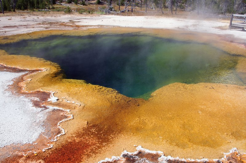 Yellowstone National Park. (Foto: CC/Flickr.com | Pascal)